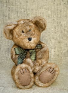 Free Cute Little Brown Toy Stuffed Bear Stock Images - 10228624