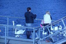 Free Two Women Feeding The Swans Royalty Free Stock Image - 102226366