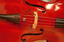 Musical String Instrument Stock Images