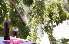 Free Wine At Table Stock Images - 10231294