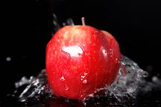 Free Fresh Red Apple Stock Photography - 10233522