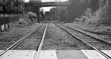 Free Railroad Tracks Under And Then Over A Bridge Stock Photos - 10235143