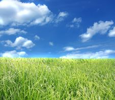 The Blue Sky And Green Grass. Royalty Free Stock Photography