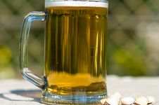 Free Beer In A Mug. Stock Photos - 10236643