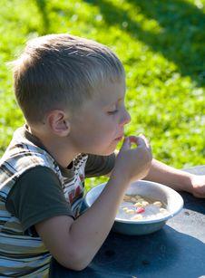 Free The Boy Eats Wild Strawberry. Stock Image - 10236661