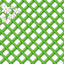 Free Green Lattice Scrapbook Stock Images - 10236844
