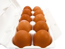 Free Container Of Eggs Royalty Free Stock Photo - 10237165