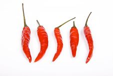 Free Red Hot Chili Pepper Stock Photo - 10237480