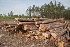 Free Sawmill Stock Photography - 10238192