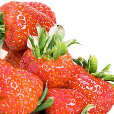 Free Strawberries Stock Image - 10239561