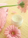 Free Spa Essentials. Cream And Flowers. Stock Photography - 10244902