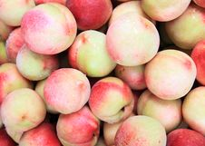 Free Peach Stock Photos - 10240313