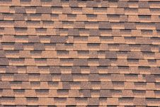 Free Shingles Royalty Free Stock Images - 10240639