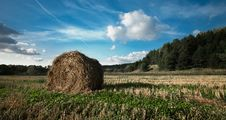 Free Haystack On The Field Royalty Free Stock Photography - 10242297