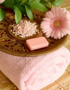 Free Towel, Soap, Bath Salt And Gerber. Stock Photography - 10244072