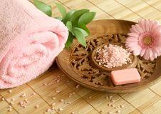 Free Towel, Soap, Bath Salt And Gerber. Stock Photography - 10244162