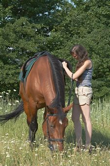 Free Girl Saddles A Sorrel Royalty Free Stock Photo - 10244495