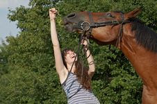 Free Girl And Horse Stock Photo - 10244940
