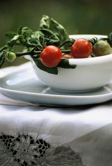 Free Cherry Tomatoes And Basil Royalty Free Stock Photography - 10245667
