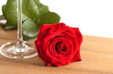 Free Red Rose And Wine Glass Royalty Free Stock Photo - 10246305
