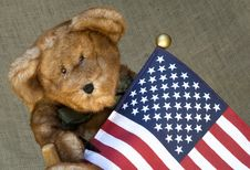 Free Stuffed Toy Bear Holding A Flag Royalty Free Stock Image - 10248396