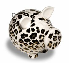 Free Leopard Skin Piggy Bank Stock Photography - 10248562