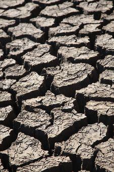 Free Dry Land Stock Image - 10249351