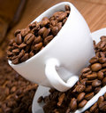 Free Old Coffee Grinder Stock Photo - 10251300
