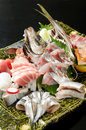 Free Sashimi Stock Image - 10251961