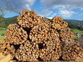 Free Firewood Stock Photography - 10253522