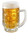Free Light Beer In Glass Stock Images - 10259014