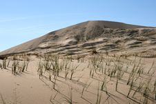 Free Kelso Sand Dunes In Mojave Desert, California Stock Photo - 10250680