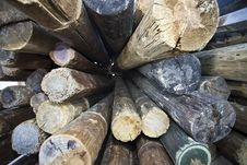 Free Logs Of Wood Royalty Free Stock Images - 10251129
