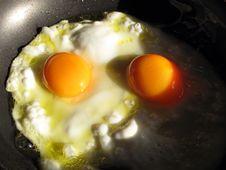 Free Eggs Fried Stock Photo - 10251160