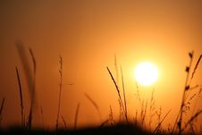 Free The Sundown. Royalty Free Stock Images - 10251189