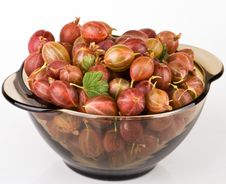 Free Gooseberries In Bowl Stock Photos - 10253553