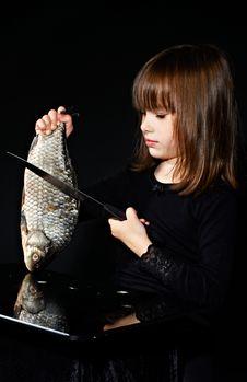 Preparation Fish Stock Photo