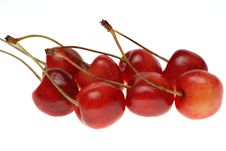 Free Red Sweet Cherry Royalty Free Stock Photo - 10255945