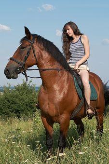 Free Girl Sits On Horseback Royalty Free Stock Photography - 10256137