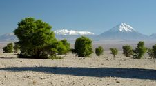 Free Licancabur Volcano, Andes Stock Image - 10259131