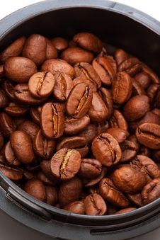 Free Coffee Beans Royalty Free Stock Images - 10259459