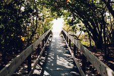 Free Beach, Boardwalk, Bridge, Daylight Royalty Free Stock Photo - 102500715