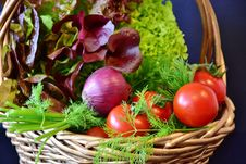 Free Natural Foods, Vegetable, Local Food, Food Royalty Free Stock Photo - 102570055