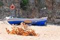 Free Blue Boat Royalty Free Stock Image - 10266726