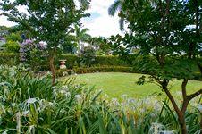 Free Garden Stock Photography - 10260912