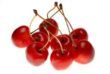 Free Red Sweet Cherry Royalty Free Stock Photo - 10268075