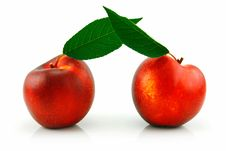 Free Ripe Peach (Nectarine) With Green Leafs Royalty Free Stock Images - 10269249