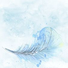 Free Water, Sky, Feather, Wave Stock Image - 102634611