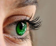 Free Eyebrow, Eyelash, Eye, Close Up Royalty Free Stock Photography - 102634757