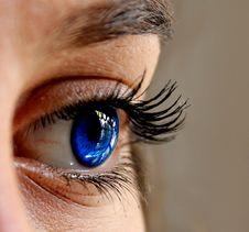 Free Eyebrow, Eyelash, Eye, Close Up Royalty Free Stock Photography - 102643297